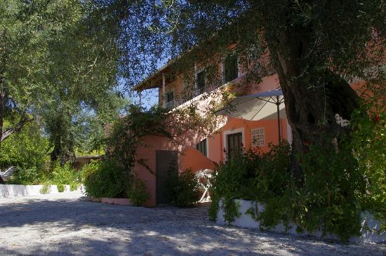 Marilena Apartments & Studios: дворик