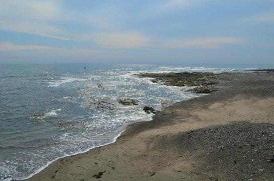 御前崎海岸