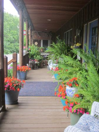 Morning Glory Inn: Front porch in the summer