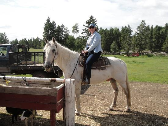Spruce Hill Resort & Spa: Horse back riding.