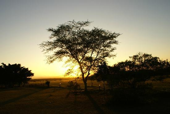 ‪‪Amorello Bush Golf Lodge‬: Sunset