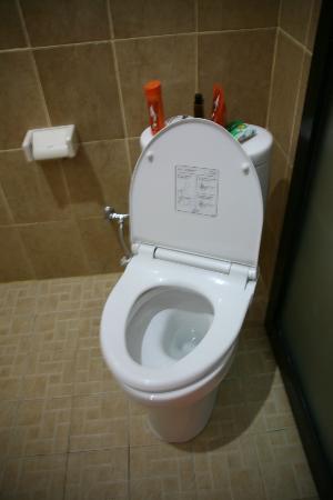 Arya Inn Lembongan: WC