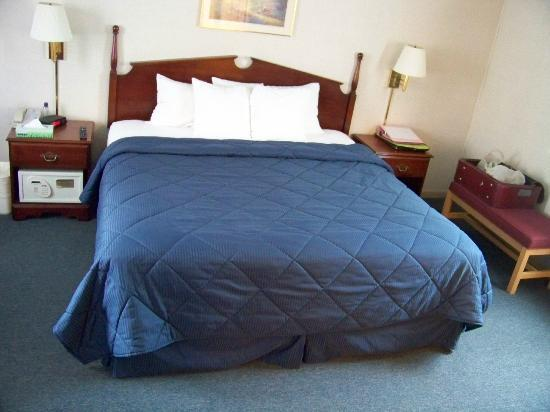 Comfort Inn and Suites Colonial: bed in the room
