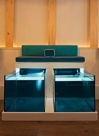 AquaBliss Fish Spa tanks