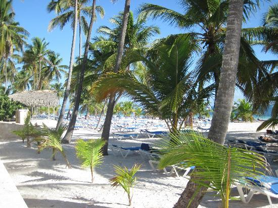 IFA Villas Bavaro Resort & Spa: beach