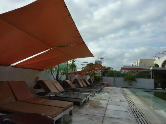 Hotel Cocoon : piscina