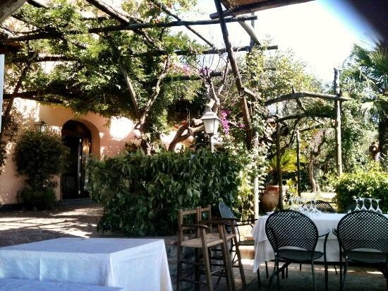 Relais Villa Caprile: The garden en the entrance of the restaurant