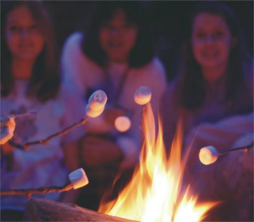 ACE Adventure Resort: Campfire Memories