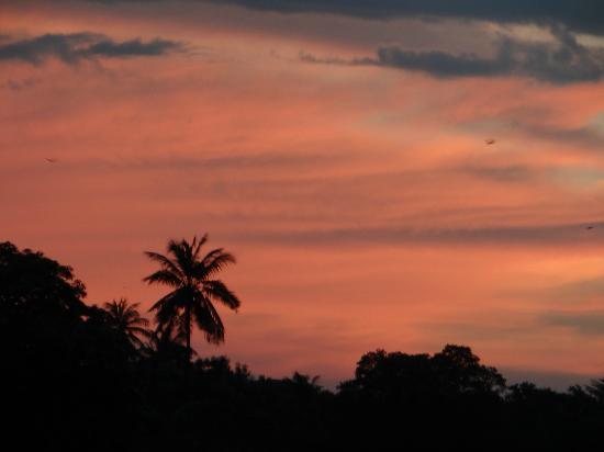 Palm Garden Guest House : Coucher de soleil