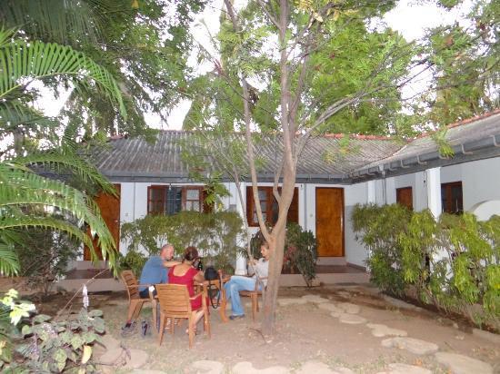 Palm Garden Guest House : Palm Garden
