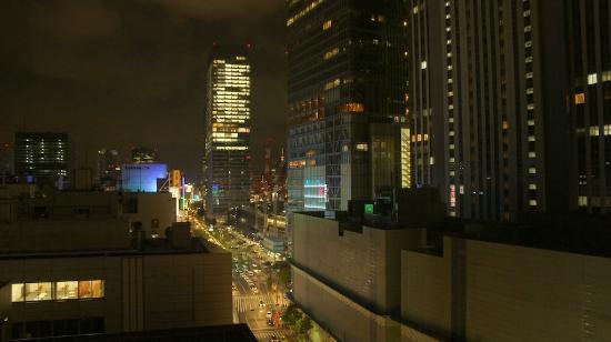 Hotel Ryumeikan Tokyo: View of Tokyo Station & Four Seasons Marunouchi