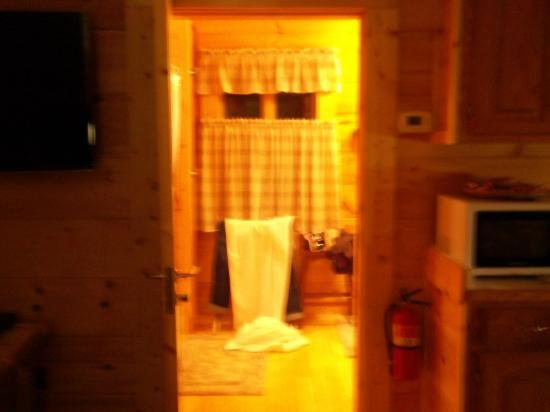 Chilhowee Mountain Retreat: Bathroom w/ Towel Warmer