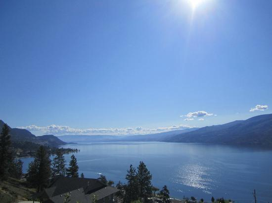 Okanagan Oasis B&B: Beautiful unobstruckted views!