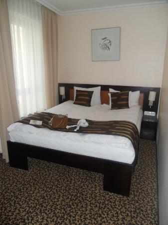 Ambra Hotel: room