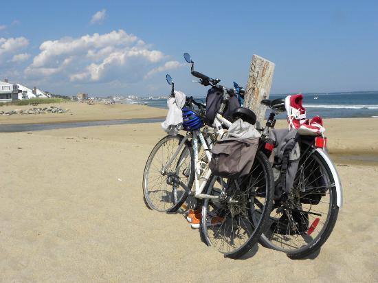 Beau Rivage Motel: Arrêt sur la plage, Saco