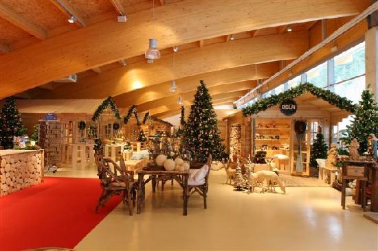 DOLFI LAND Shop