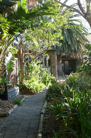 كانجارو أيلاند سي فرونت ريزورت: jardin de l'hôtel 