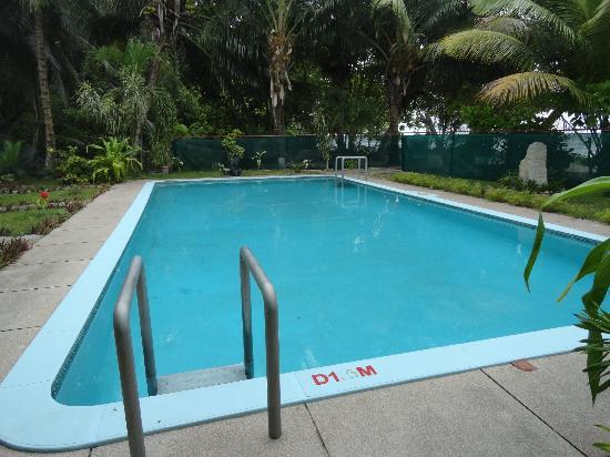 Palm Beach Hotel : pool