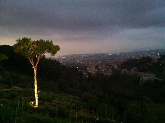 Mounir: sunset