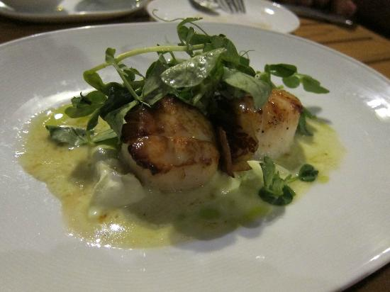 Maritime Parc: 2nd: Scallops w/ crispy pancetta on pea pudding, with pea greens