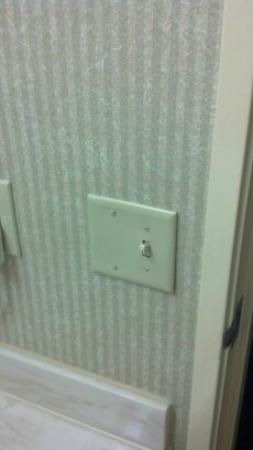 Country Inn & Suites by Radisson, Columbia Airport, SC: No fans in the bathroom. Because there is too much mold in the walls already?
