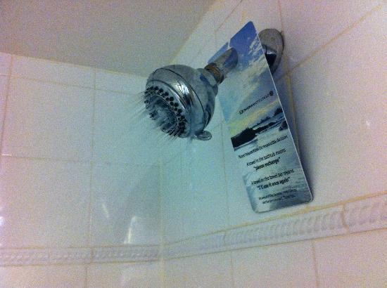 Sandman Hotel Calgary City Centre: Leaking shower head