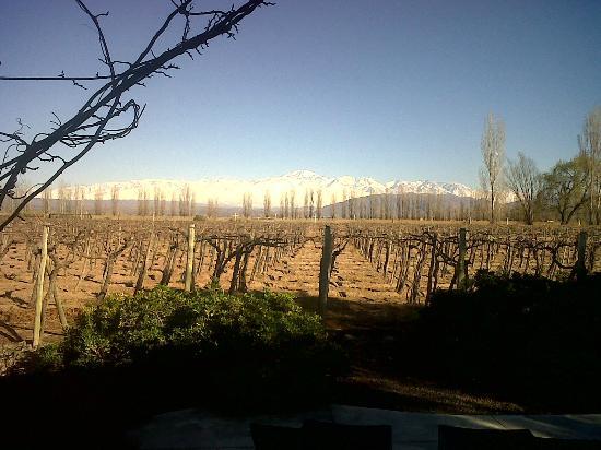 Cavas Wine Lodge: Vista desde la habitación