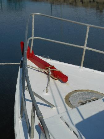 Ugly Anne Boat Cruises: The bow of the Ugly Anne