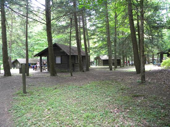 Robert Treman State Park: Camping in the park