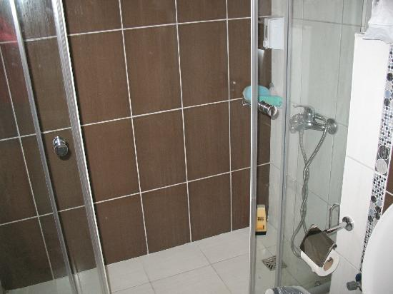 Sweet Park Hotel: shower