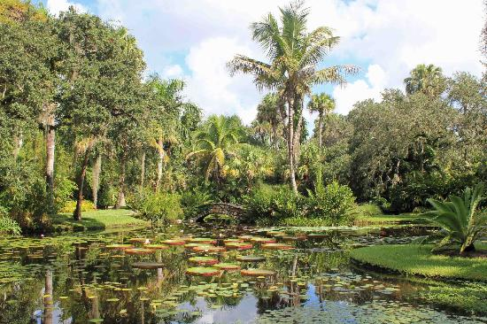 Even the benches are beautiful picture of mckee - Mckee botanical gardens vero beach ...