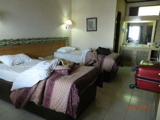 Bromo Cottages Hotel: Interno della camera