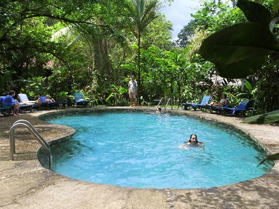 Esquinas Rainforest Lodge : Chlorine-free pool fed from a jungle stream