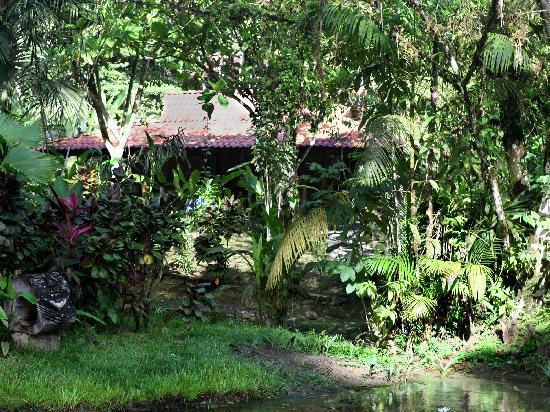 Esquinas Rainforest Lodge: Cabin hidden in a tropical garden