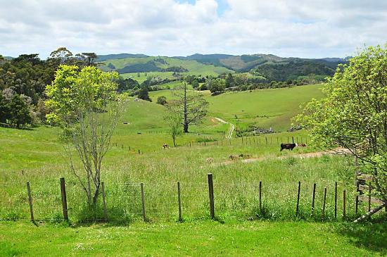 Wayby, New Zealand: Rural Views