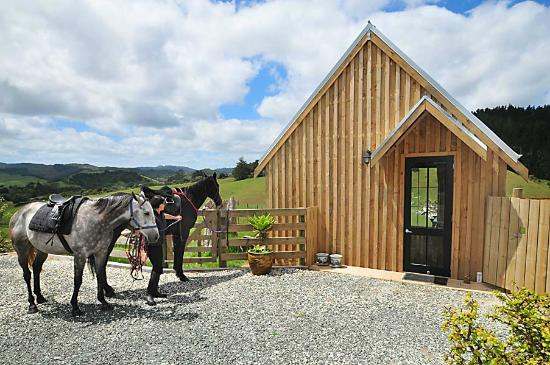 Wayby, New Zealand: Horse Riding
