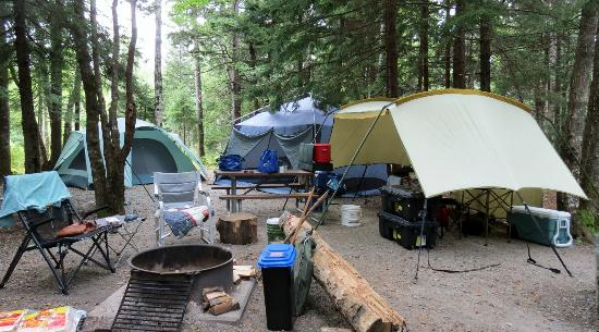 Blackwoods Campground : Campsite A21