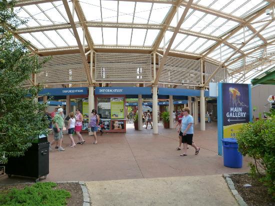 Picture Of Mystic Aquarium