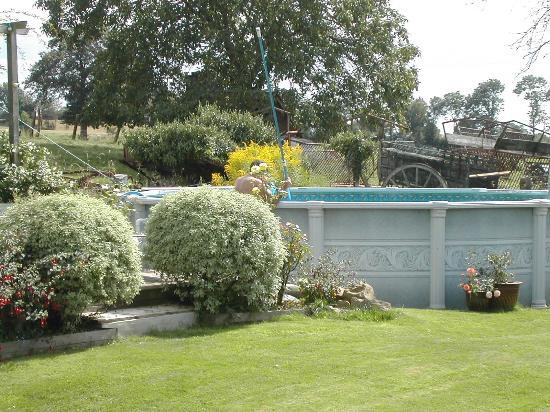 Le Jardin: Pool & Decking