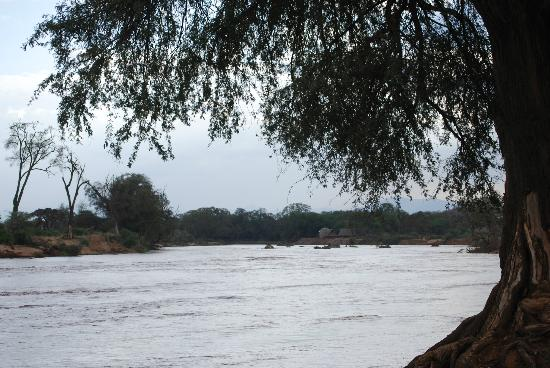 Samburu Intrepids Luxury Tented Camp: The river was fast and full!