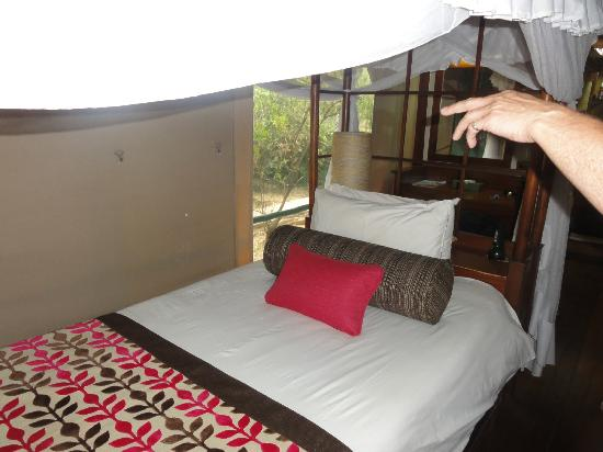 Samburu Intrepids Luxury Tented Camp: very firm beds - you need this after your safari massage