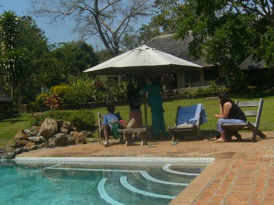 Ngala Beach Lodge: vieuw near by the pool