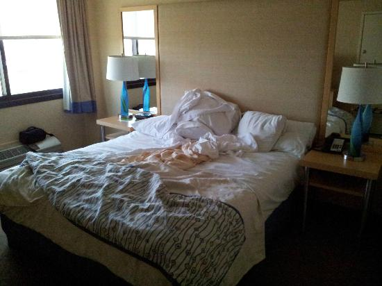 La Quinta Inn & Suites LAX: King room