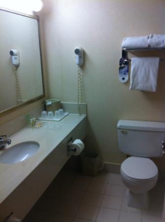 Holiday Inn & Suites Winnipeg Downtown: bath and body works toiletries