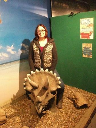 Torquays Dinosaur World: Big Kids having fun in dino world