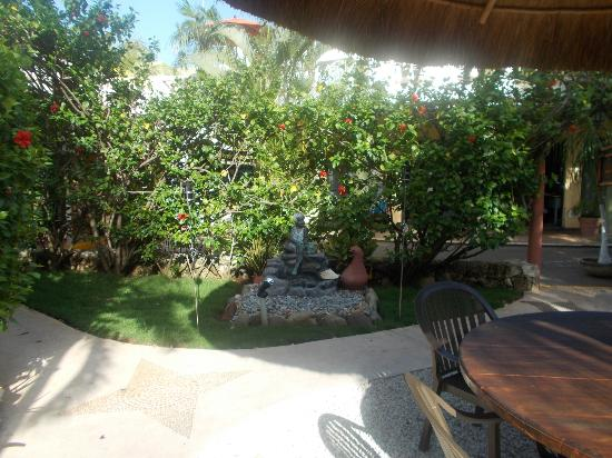 Mayan Bistro: The garden path