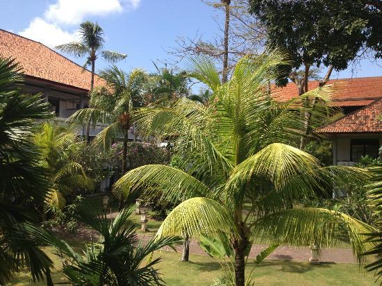 Puri Saron Seminyak: The garden