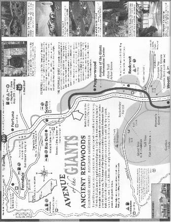 Avenue of the Giants: Ave of the Giants - commercial map - pg 1