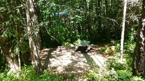 Timberlake Campground and RV Park: Another tent space