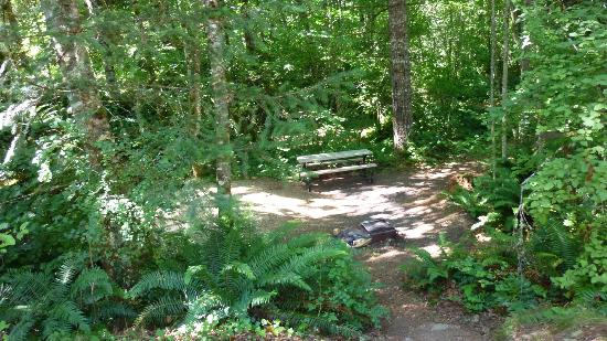Timberlake Campground and RV Park: Beautiful tent camping areas